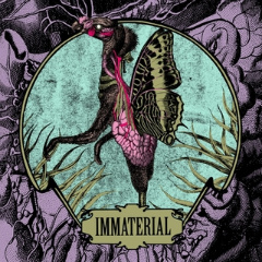 IMMATERIAL ep 45T